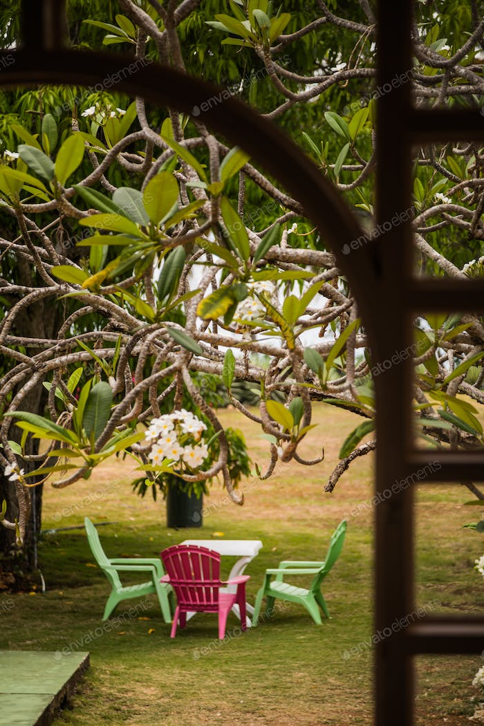 Beautiful Garden and Table in the Caribbean