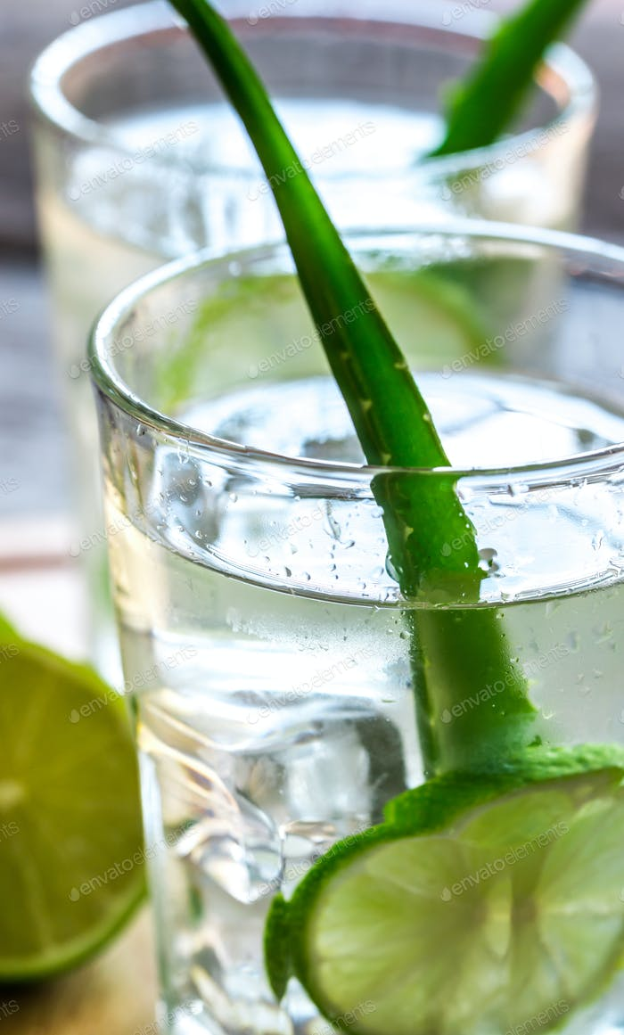 Cocktails of Aloe Vera and coconut juice