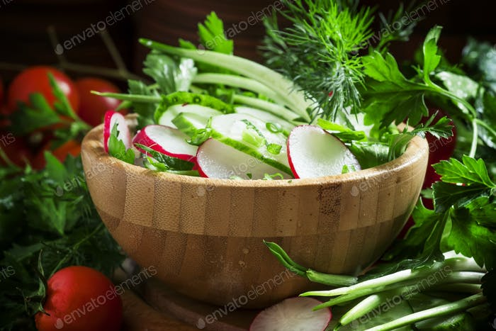 Spring salad with fresh cucumber, radishes, herbs, garlic
