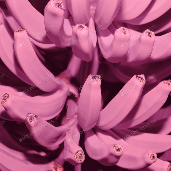 Pink bananas fashion. Art. Minimal. Creative Idea