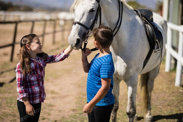 Siblings standing with white horse in the ranch