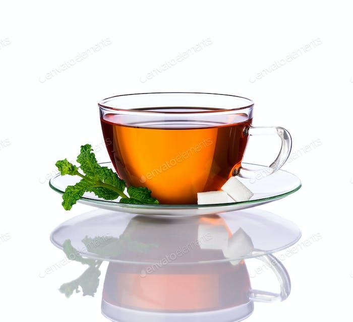Mint Tea Isolated on White