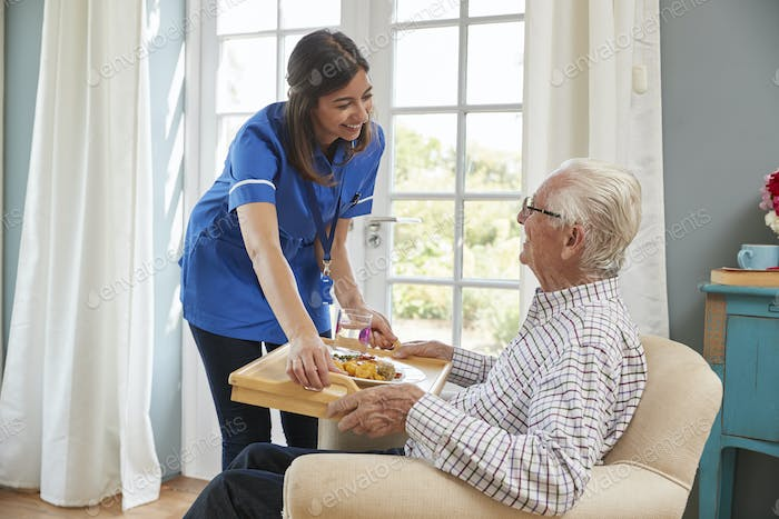 Nurse serving dinner to a senior man in an armchair at home