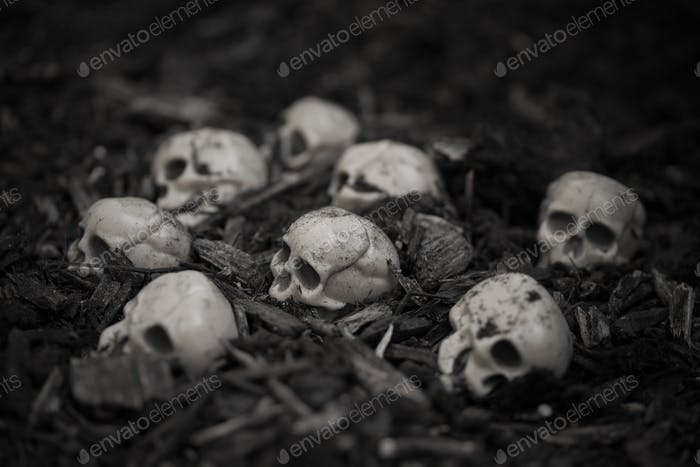 Heap of human skulls on ground