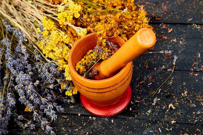 Cup of herbal tea - tutsan, sagebrush, oregano, helichrysum, lavender