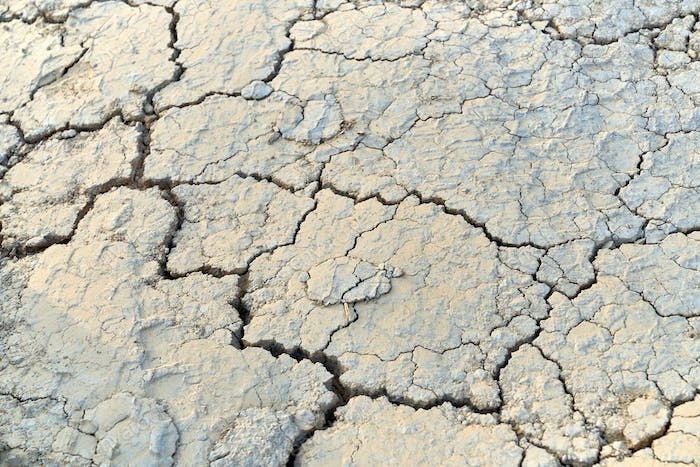 Cracks in the dried earth