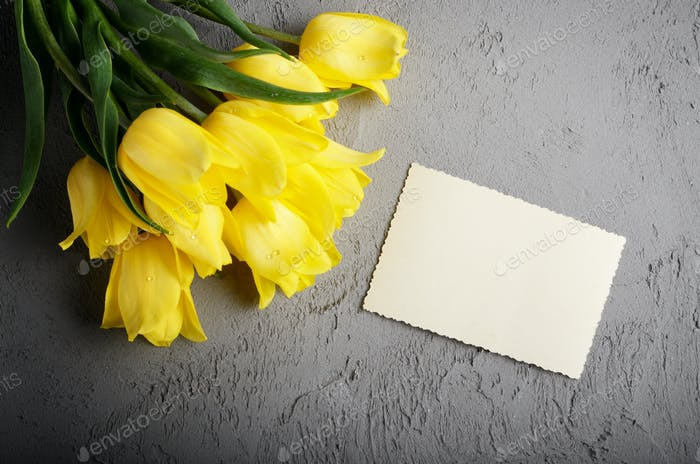 Yellow tulip near blank greeting card on grey background with sp