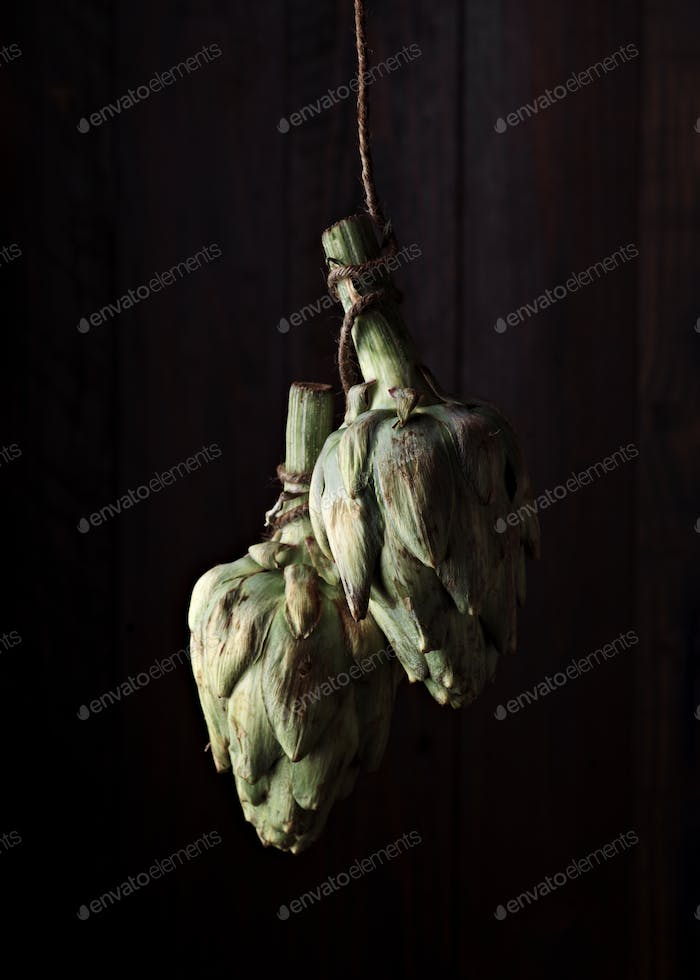 two raw whole artichokes hanging on a rope in front of a dark wooden background