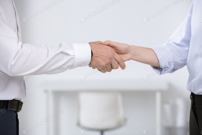Hands of business partners greeting each other by meeting or after negotiation