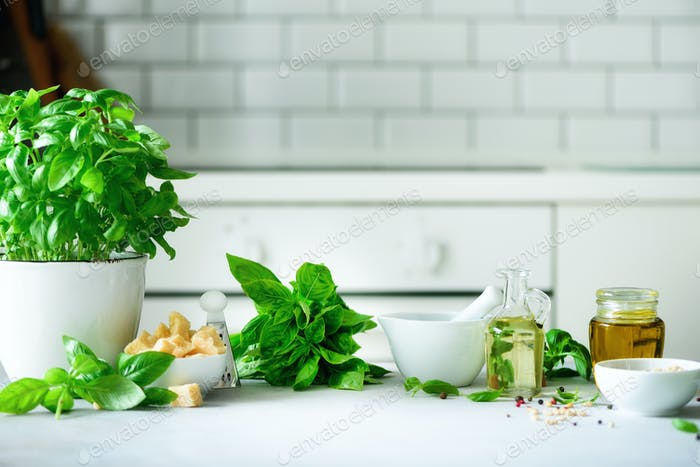 Pot of fresh basil, oil, pine nuts, with white kitchen background. Copy space. Ingredients for