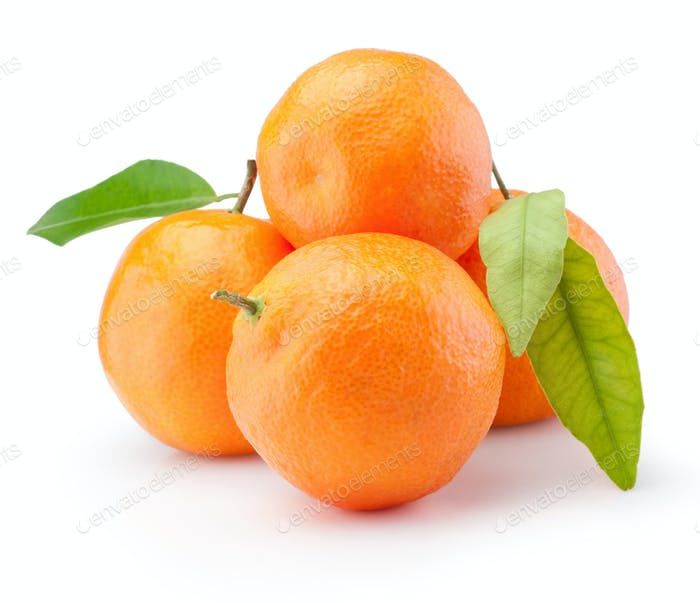 Fresh tangerines oranges fruit with leaves isolated on white bac