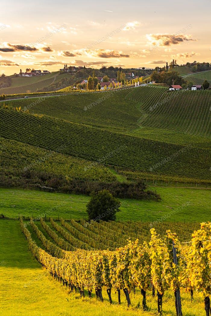 Blick bei Sonnenuntergang von der berühmten südsteirischen Weinstraße. Ratsch, Österreich Tourismus