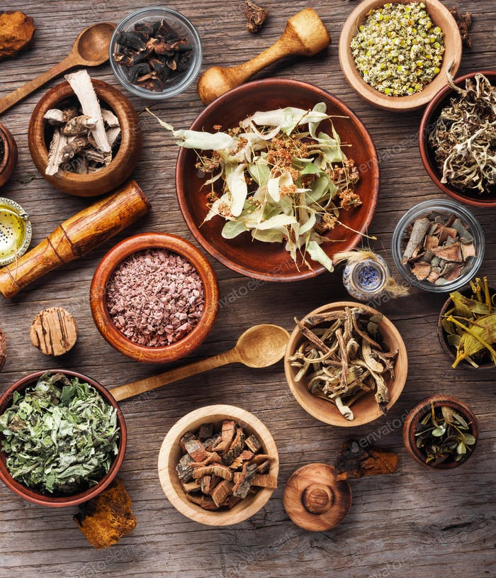 Healing roots and herbs