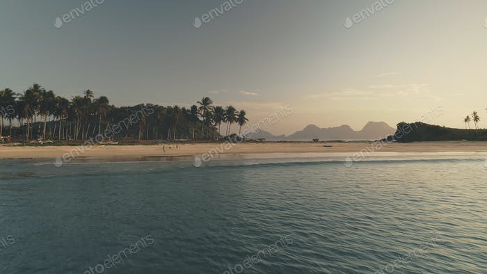 Seascape at sand beach with palm trees at sea shore aerial. Summer tourist vacation