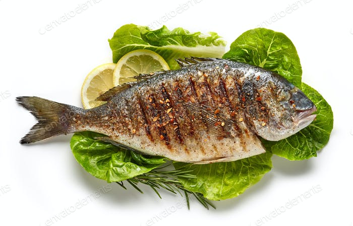 grilled fish on green salad leaves