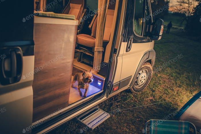 Dog in the Camper Van