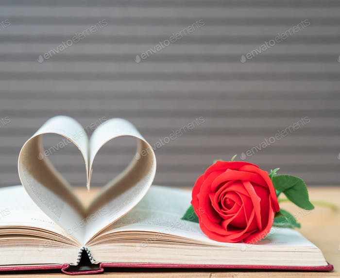 Pages of book curved heart shape and red rose