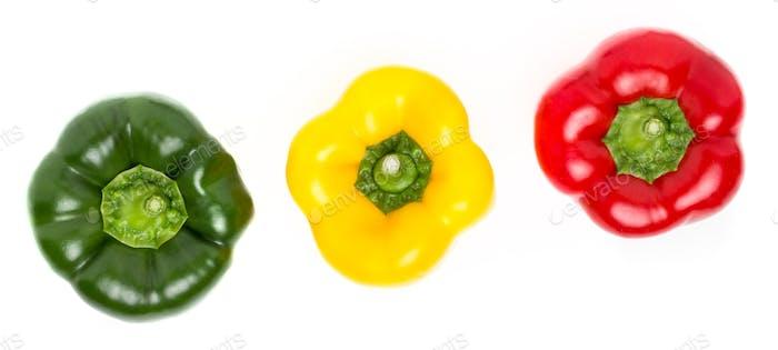 Drei Paprika in verschiedenen Farben liegen in einer Reihe auf einem weißen Rückgrat
