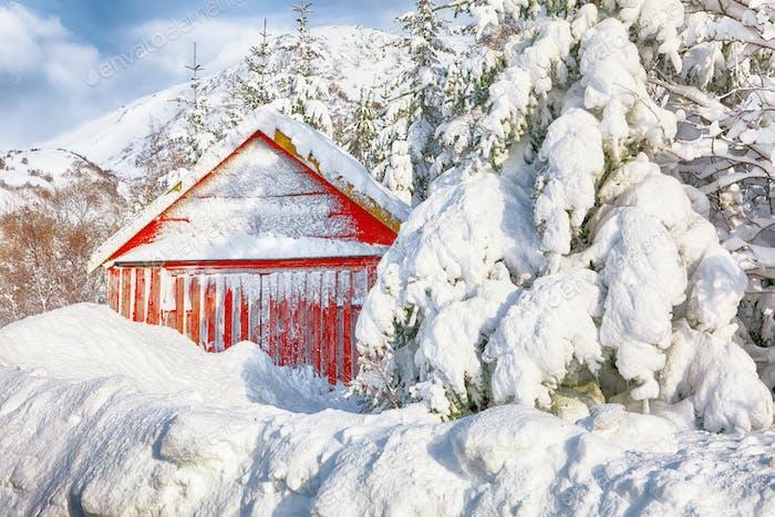 Atemberaubende Winterlandschaft mit traditionellen norwegischen roten Holzhäusern auf dem Dorf Valberg bei Lofotens.