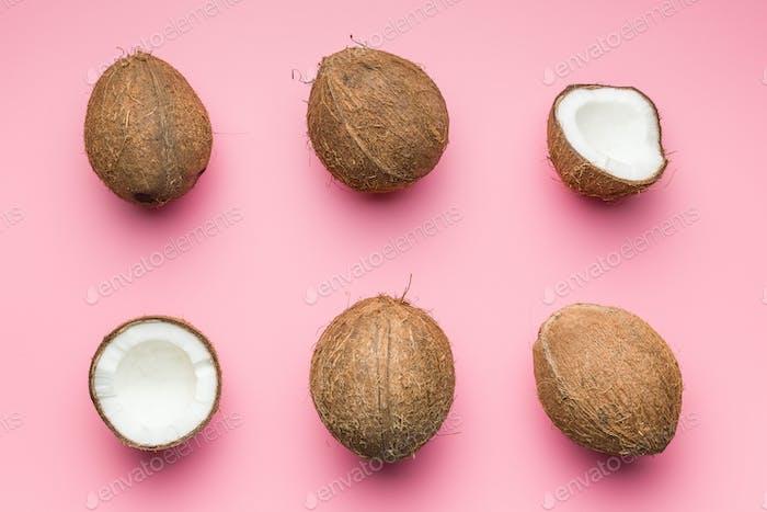 Die halbierten Kokosnüsse.
