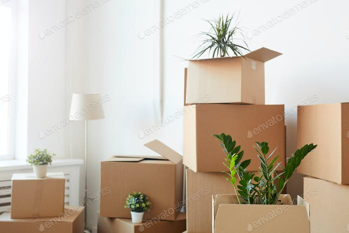 Moving House Background