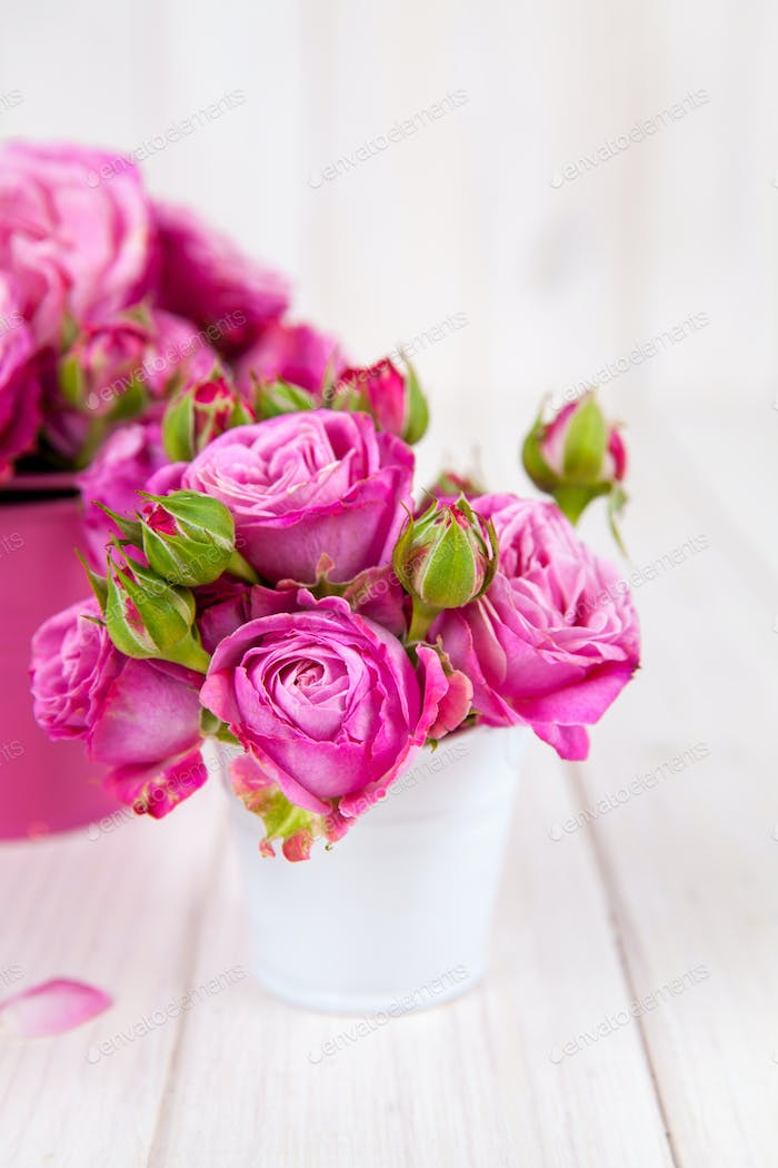 Pink roses(peony) in vase on white wooden background. flowers