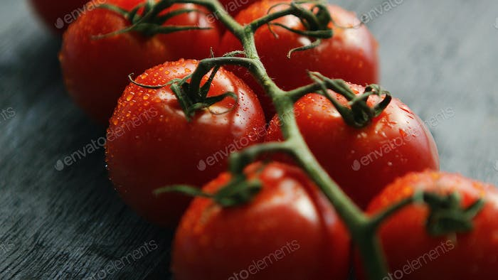Twig with ripe red tomatoes