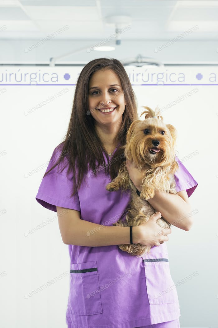 Cheerful women veterinary holding a little dog.