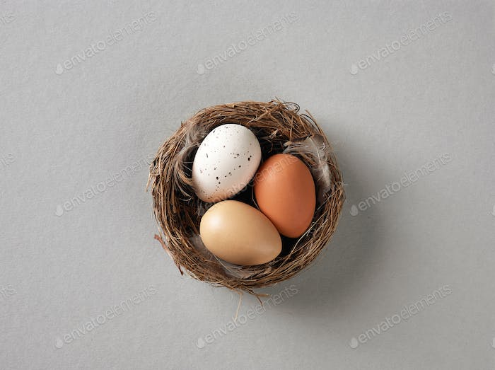 nest of easter eggs
