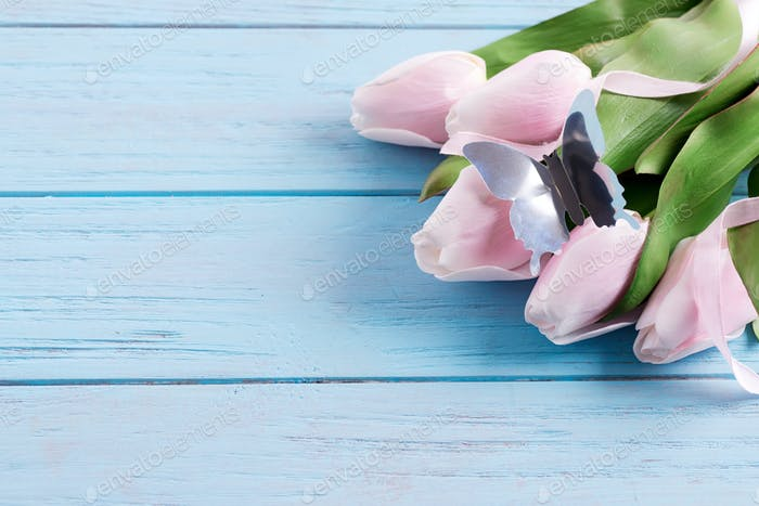 Grußkarte mit frischen zarten rosa Tulpen und Bastelschmetterling auf einem pastellblauen Holz