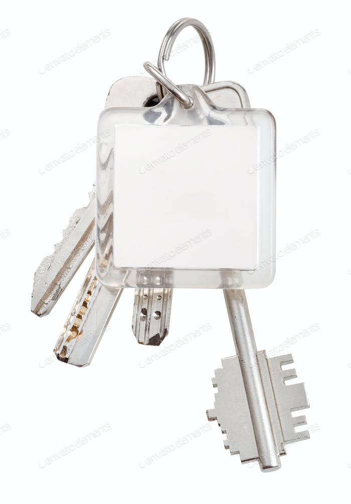 square keychain and bunch of keys