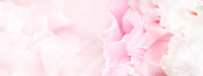 Soft Focus Banner with Pink Flowers.