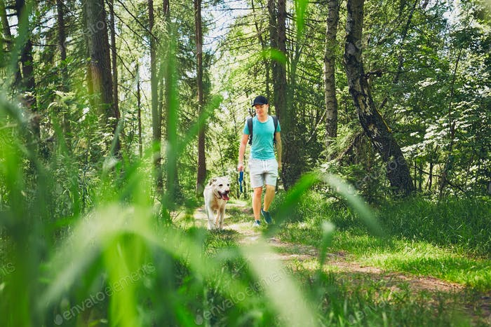 Tourist with dog in forest