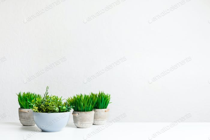 Collection of grassy artificial potted plants, copy space
