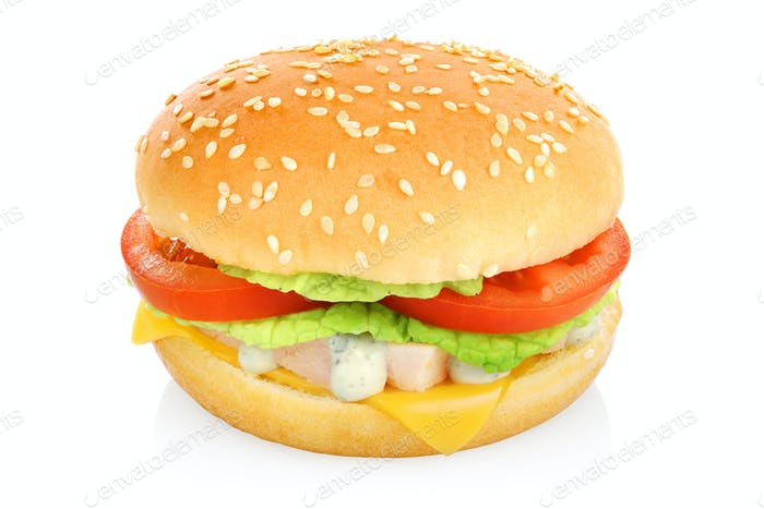 Hamburger sandwich isolated