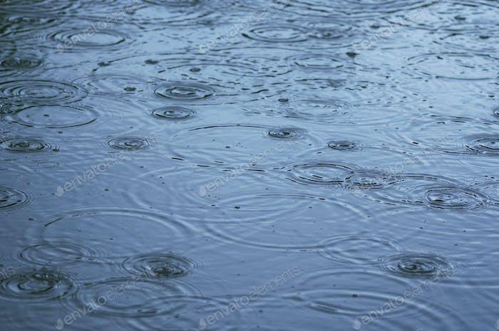 Rain - rings on water