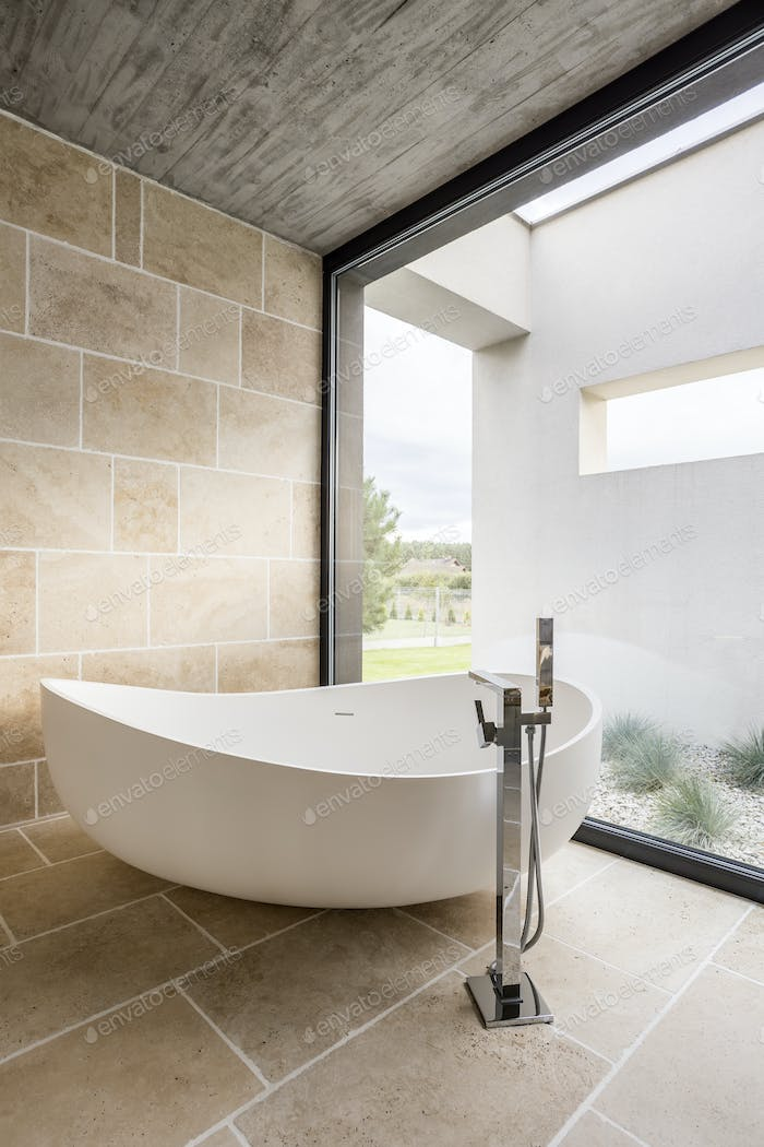 Large bathtub and window wall