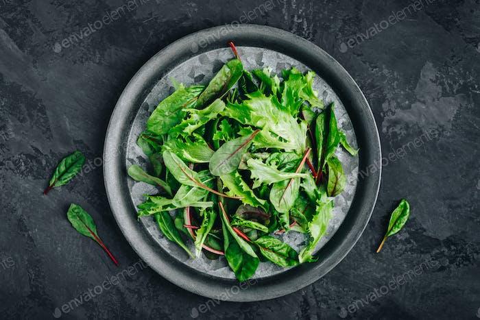 Mischen Sie frische grüne Salatblätter für Salat auf einem dunklen Steinhintergrund