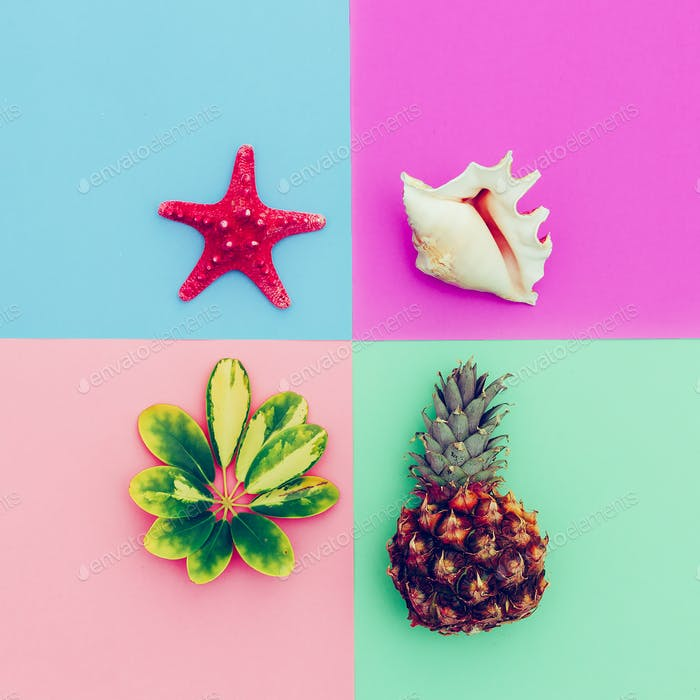 Beach set. Pineapple shells tropical plants. Minimal art