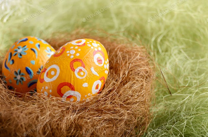 Painted easter eggs in the nest on green background