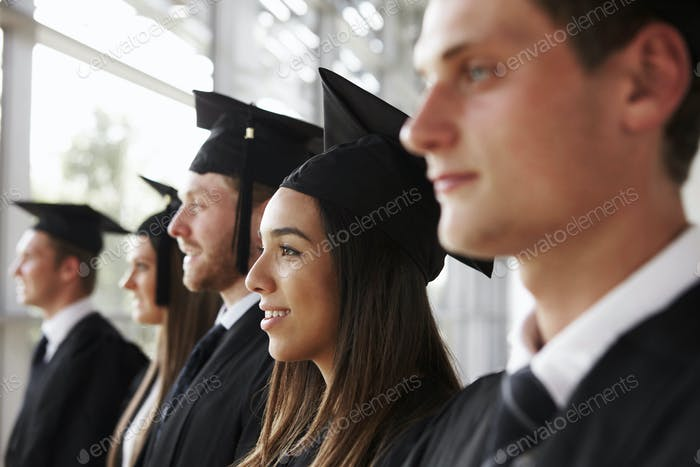 Happy graduates in mortars and gowns, head and shoulders