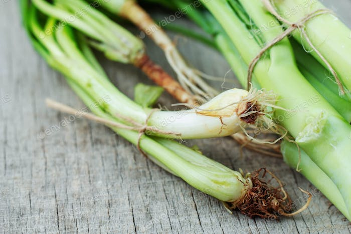 spring onion on wooden floor
