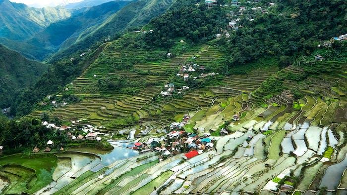 Terrazas de arroz. Banaue, Filipinas
