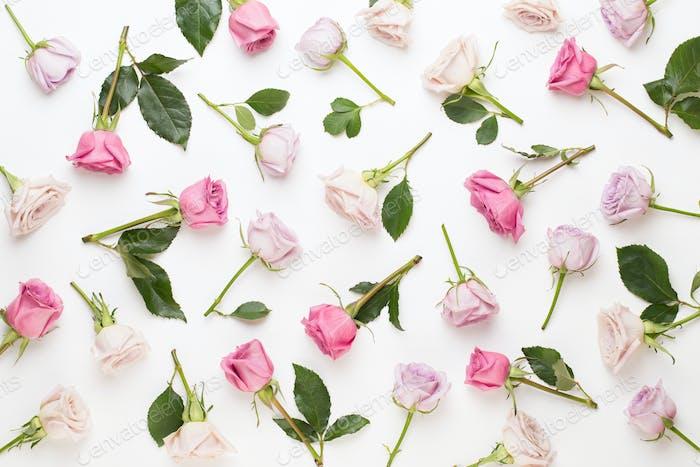 Blumenmuster aus rosa und beige Rosen auf weißem Hintergrund.