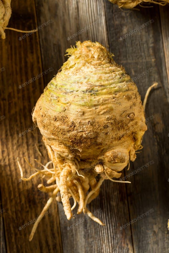 Raw Organic Brown Celery Root