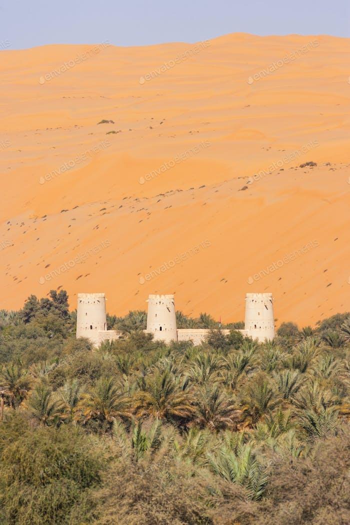 Arabian Fort in an Oasis