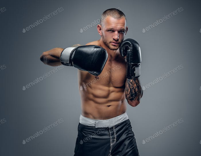 Shirtless fighter isolated on grey background.