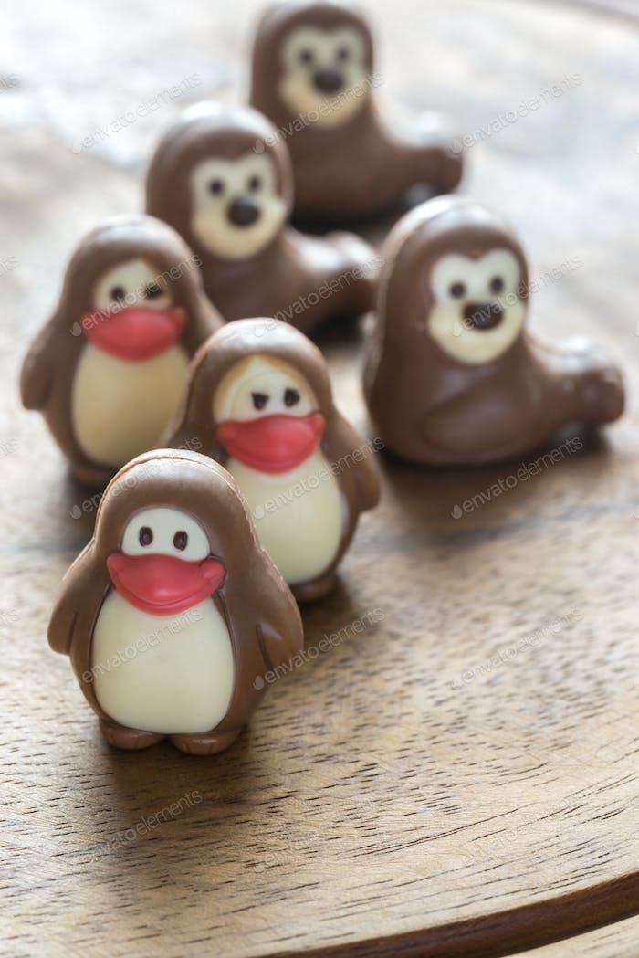 Chocolate candies in the shape of animals