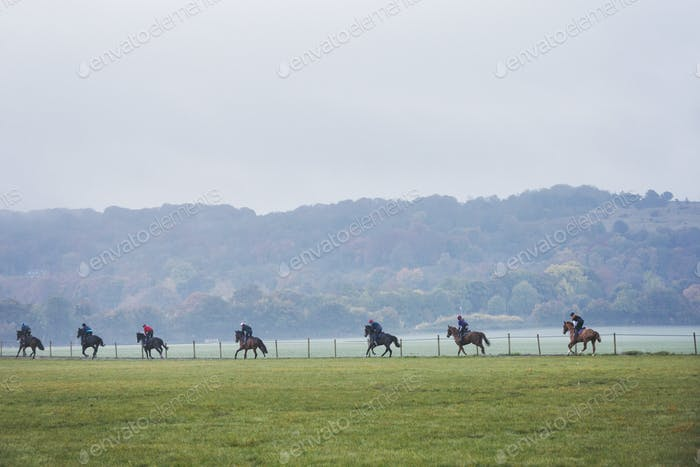 A string of riders and horses on the gallops moving along a path by a fence. Racehorse gallops.