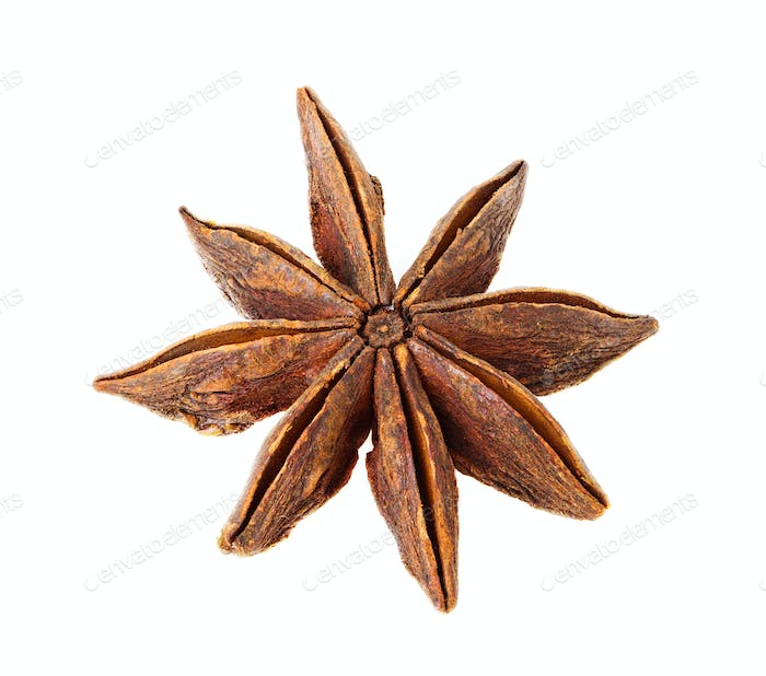 a single star anise isolated on white